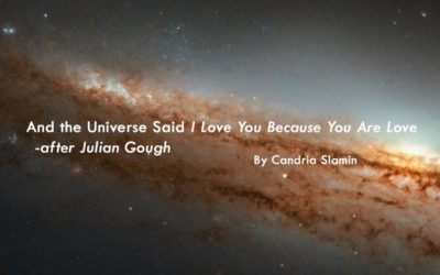 And the Universe Said I Love You Because You Are Love  – after Julian Gough