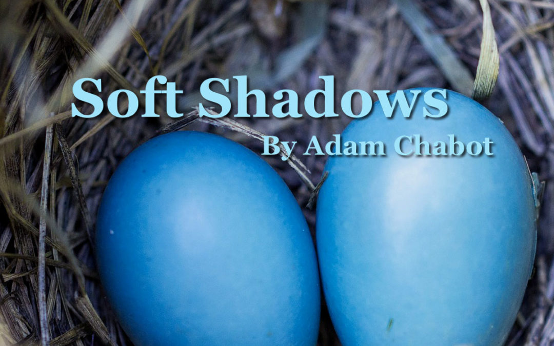 Soft Shadows